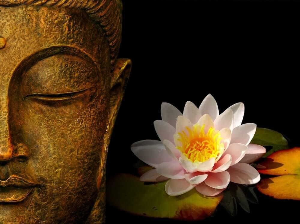 Những bài thơ hay về Phật Giáo và Cuộc Sống 3